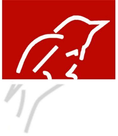 CABWIM consultancy Wölfe | Gänse | Saatkrähe